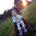 vozík (1)
